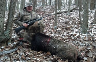 Boar hunting guides TN